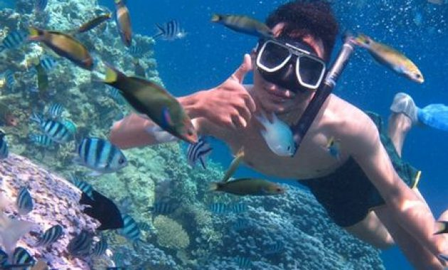 Daftar Tempat Wisata Karimunjawa Yang Sedang Hitz