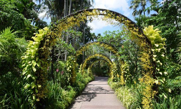 5 Tempat Wisata Alam Paling Menarik di Singapura
