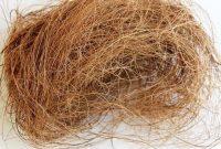 serat dari sabut kelapa