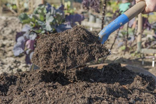 cara pembuatan kompos