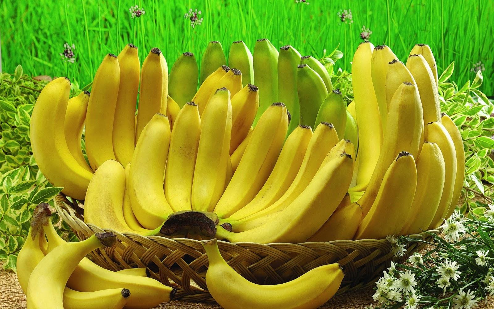 manfaat pisang ambon